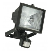 Motion Sensor & Floodlight