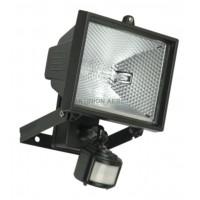 Motion Sensor & Floodlight